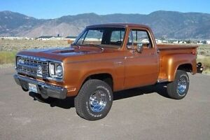 Looking for 1972-1980 Dodge D Series Stepside Truck