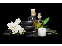 Meena Thai Massage in Plamers Green
