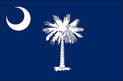 State Flag Bumper Sticker - 3x5 inch South Carolina State Flag Sticker  -decal historic bumper sc charleston