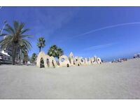 Costa del Sol Marvelous apartment sea views fully equiped, beach, Picasso Thyssen museums