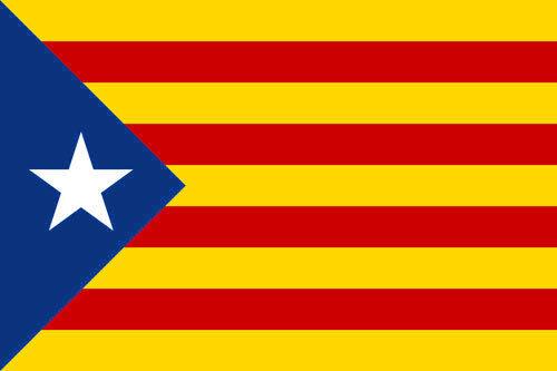 ESTELADA BLAVA FLAG 5