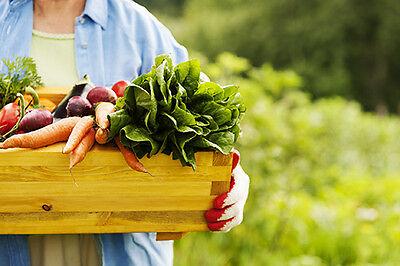 Lust auf ultrafrisches, knackiges Bio-Gemüse? (© Thinkstock über The Digitale)