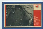 Lehigh Coal