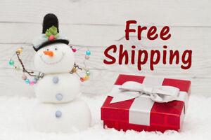 Free Shipping - Heirloom/Non-gmo Garden Seeds - Rainbow Seeds
