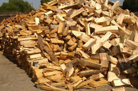 Firewood - Top Quality, Picked up or Delivered