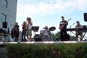 Classic Rock and Blues band Belleville Belleville Area image 1