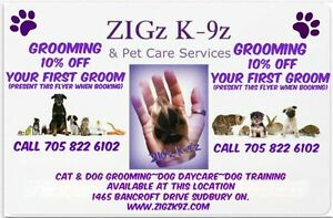 CAT & DOG GROOMING ZIGz K-9z new services
