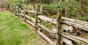 Cedar rail fence posts