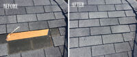 Roof repairs and tree removal serevice