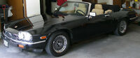 Jaguar Roadster XJS Convertible V-12 Classic Collection