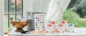 Canadian Country Chic Paint 50% OFF at Carson's Flea Market