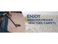 Steam carpet clean work wanted
