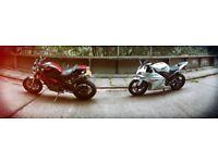 Ducati Monster M1100