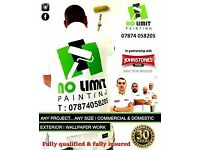 NO LIMIT PAINTERS