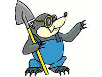 Norwich Mole Catcher - No Mole, No Fee - Norwich Area