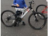 Boys SilverFox Mountain bike