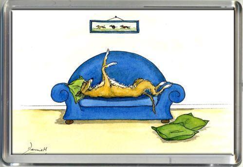 Greyhound Bed Ebay