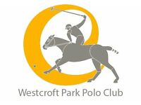 Grooms Required for Polo Yard in Chobham, Surrey