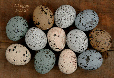 """12 Assorted 1-1/2"""" Speckled Eggs --- Shades of Blues & Browns"""