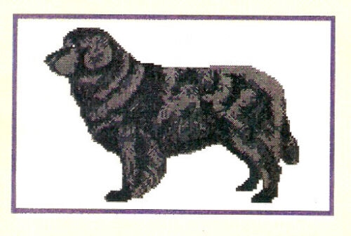 Newfoundland Dog Counted Cross Stitch Complete Kit LAST ONE!