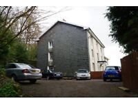beautiful large elegant house friendly flat share off st parking very large rooms private bathrooms
