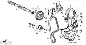 Volvo Timing Belt Diagram