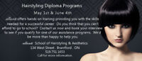 Hairstyling Programs