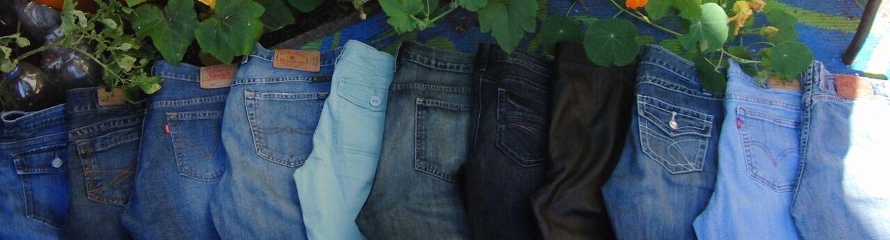 JanesJeans