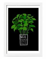 Ikea Trilling Herb Prints $10 each New in Package