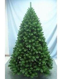 Bushy Beautiful 10ft Christmas tree