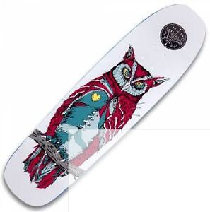 Looking for a Complete Skateboard