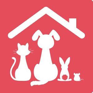 Recherche articles pour Refuge (tout pour animaux)