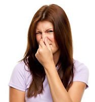 ODOR PROBLEM ? IN YOUR CAR-HOME OR WORK !!!!
