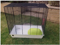 Rectangular small animal cage rat