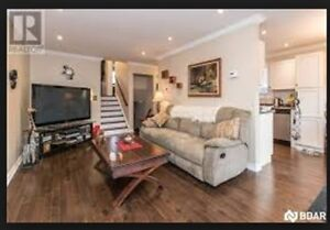Beautifully Renovated 2bdrm upper unit in raised bungalow