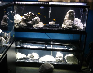 Aquariums and Stand