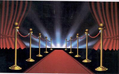 HOLLYWOOD RED CARPET photo backdrop BIRTHDAY party decor Scene Setter - Hollywood Red Carpet Backdrop