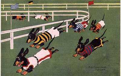 Dachshund Racing L - MATTED Dog Art Print - German / NEW