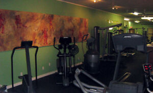 2 Fully-Equipped Gyms for sale