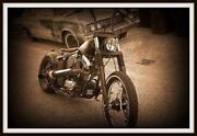 Harley EVO