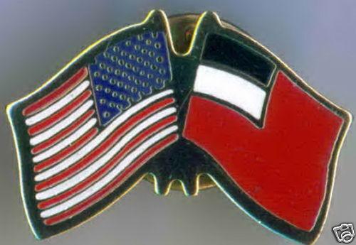 Georgia 1990-2004 / USA Dual Flag Lapel / Hat Pin NEW