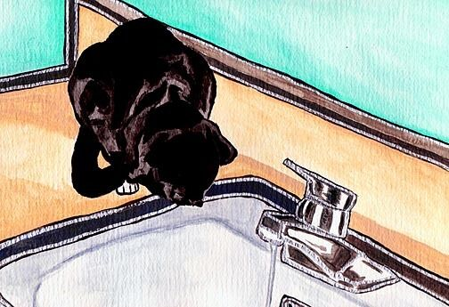 13x19 CAT & SINK  Black DSH Big Signed Art PRINT of Original Painting by VERN