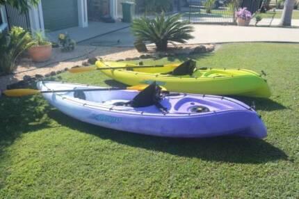 Viking Nemo Kayaks (2)
