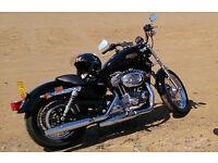 Harley Davidson Sportster 883cc XL L 2009 Vivid Black