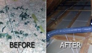 Insulation removal Cornwall Ontario image 2