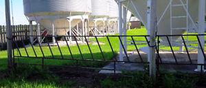 Livestock Feeder Gates