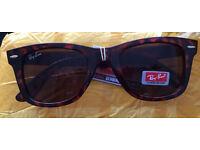 RayBan Tortoise Wayfarer Sunglasses