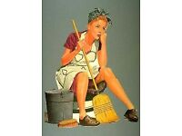 House cleaning services provided, full cleans, part cleans, pets are not a problem, friendly service