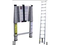 NEW Telescopic ladder