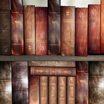 Tipps für den Kauf von antiquarischen Büchern